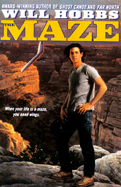 "The book jacket shows Rick Walker standing in front of the canyon called ""the maze."""